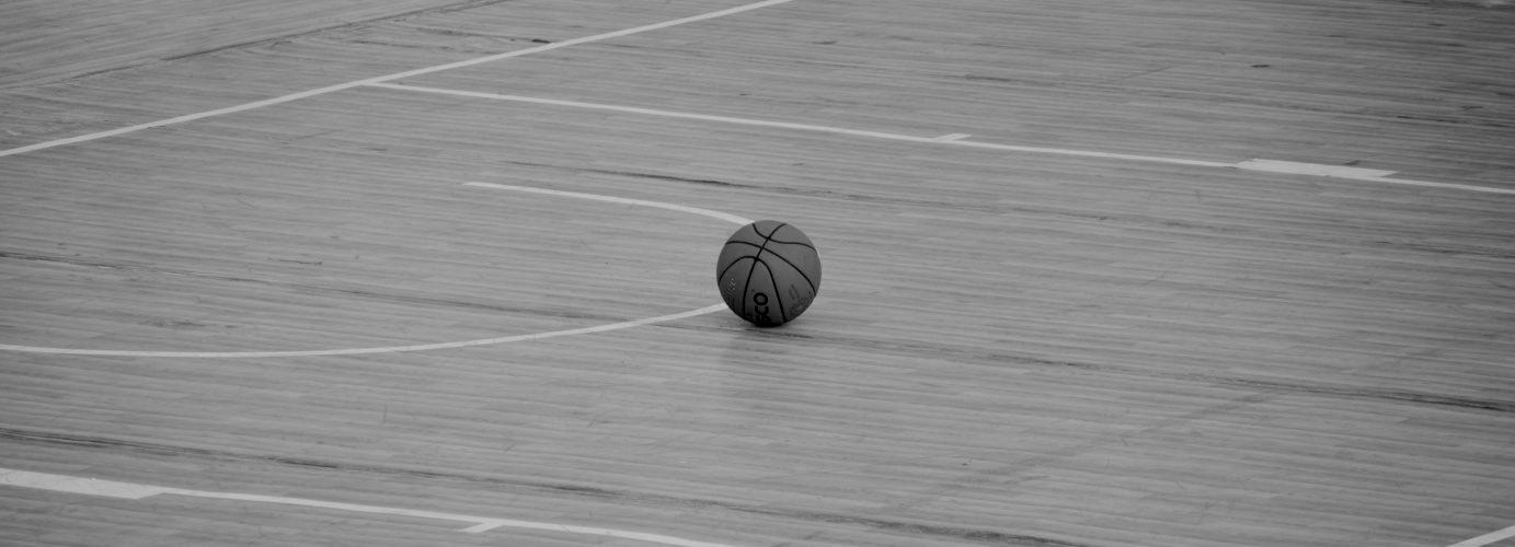 Was ist German Basketball Future?